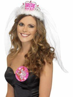 Bride to Be Tiara with Veil