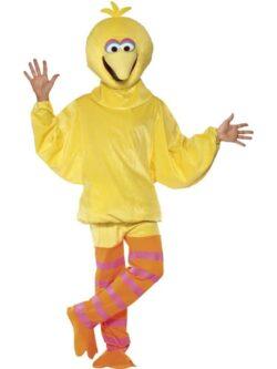 Sesame Street Big Bird Costume