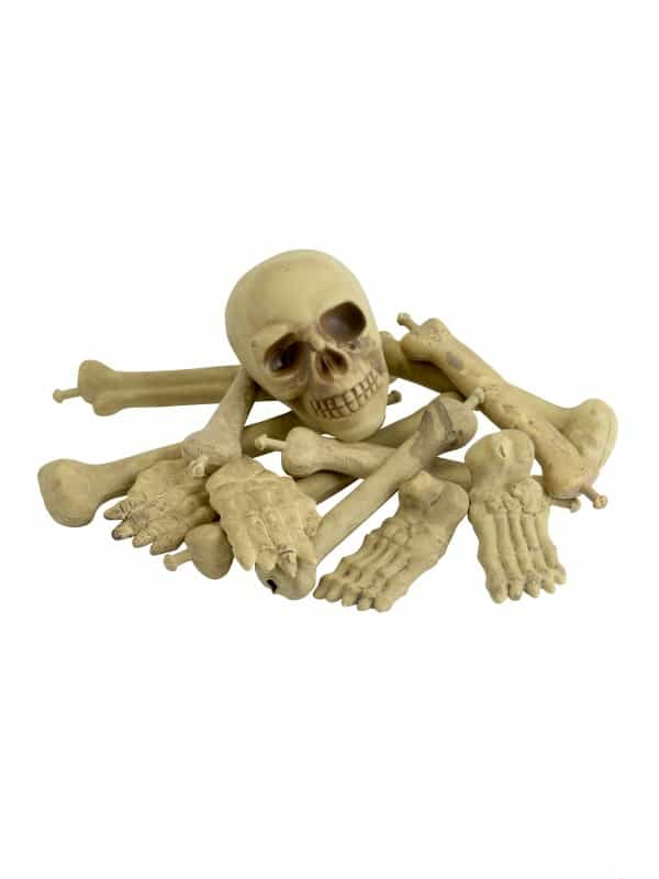 Bag of Bones & Skull